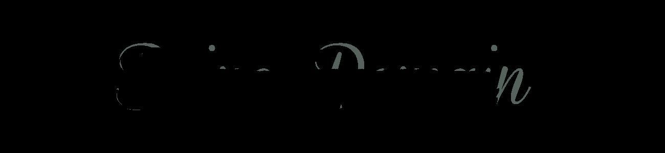 Banner-Schrifttyp03-CSD