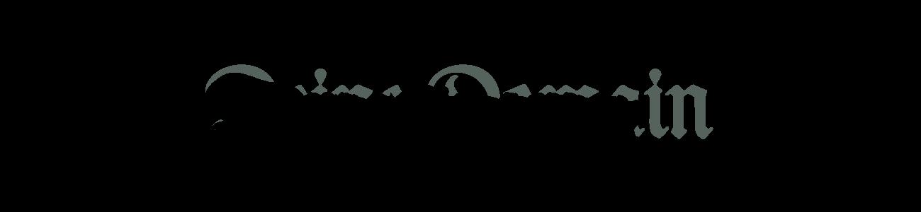 Banner-Schrifttyp04-DMF