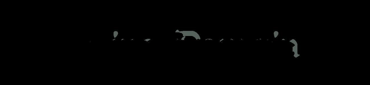 Banner-Schrifttyp08-A