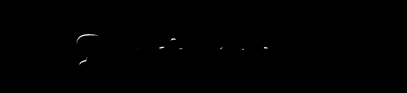 Banner-Schrifttyp11-M