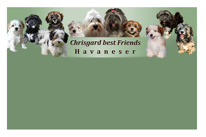 Chrisgard-Homepage