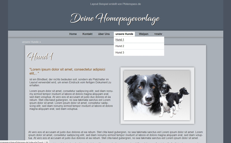 Homepagevorlage-Template-02-01-website