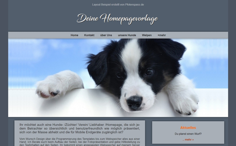 Homepagevorlage-Template-02-01