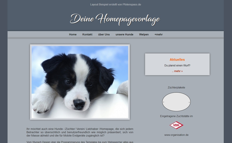 Homepagevorlage-Template-03-01