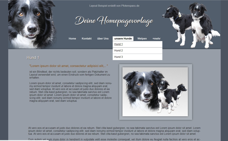 Homepagevorlage-Template-04-01-website