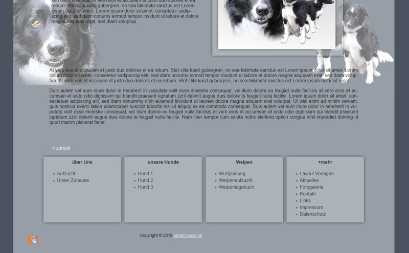 Homepagevorlage-Template-04-01-website2