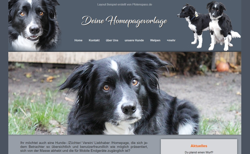 Homepagevorlage-Template-04-01