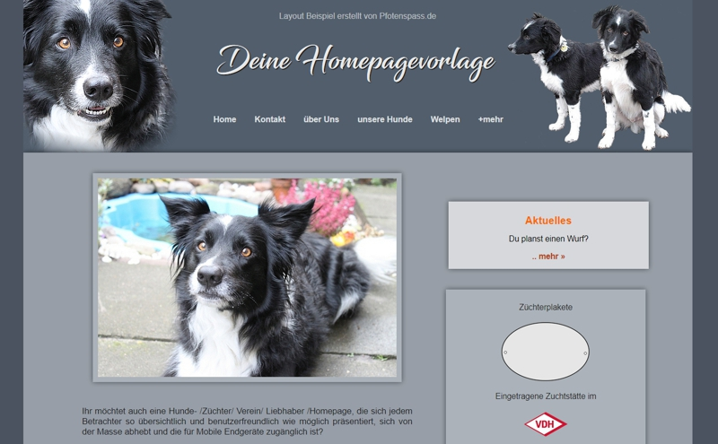 Homepagevorlage-Template-05-01