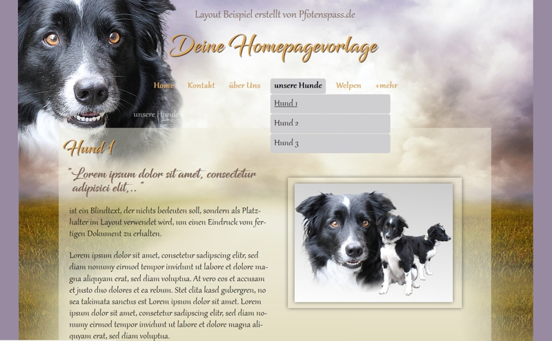 Homepagevorlage-Template-08-39-website