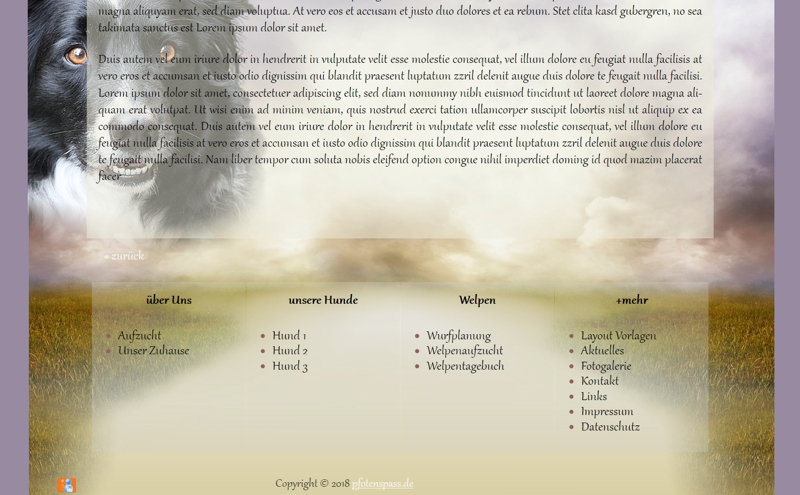 Homepagevorlage-Template-08-39-website2