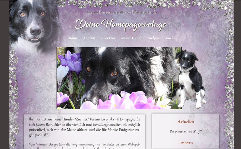 Homepagevorlage-Template-08-41