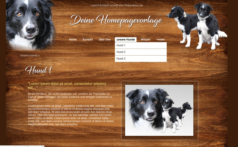 Homepagevorlage-Template10-26-webseite