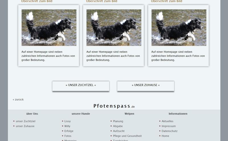 Homepagevorlage-Template-02-01-website2