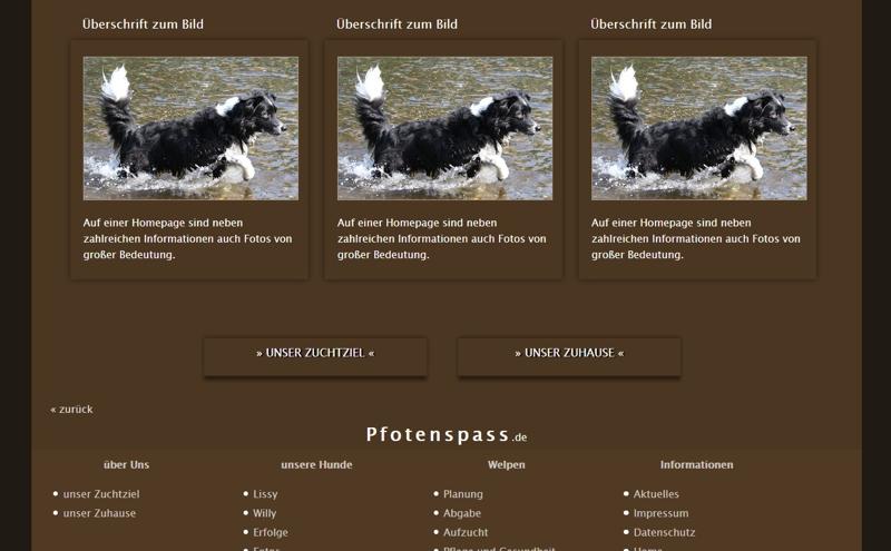 Homepagevorlage-Template-02-02-website2