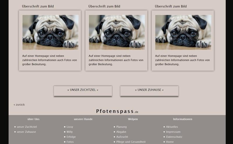 Homepagevorlage-Template-02-04-website2