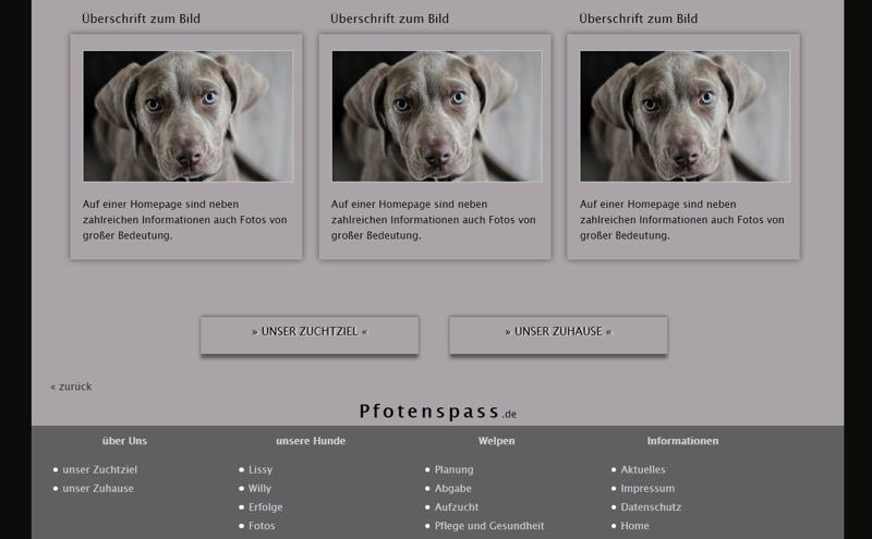 Homepagevorlage-Template-02-06-website2