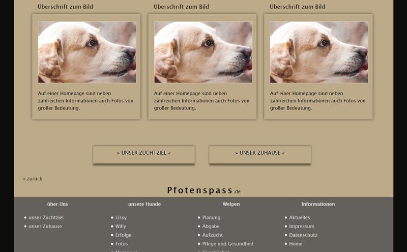Homepagevorlage-Template-02-07-website2