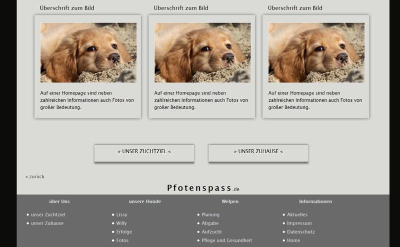 Homepagevorlage-Template-02-08-website2