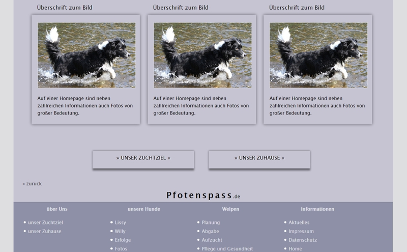Homepagevorlage-Template-02-10-website2