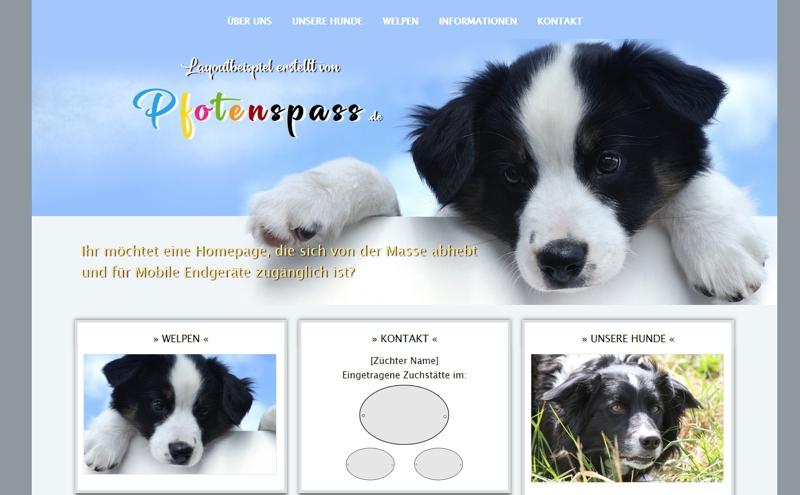 Homepagevorlage-Template-02-11