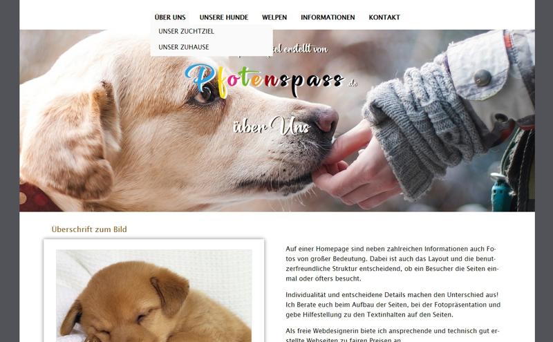 Homepagevorlage-Template-02-03-website