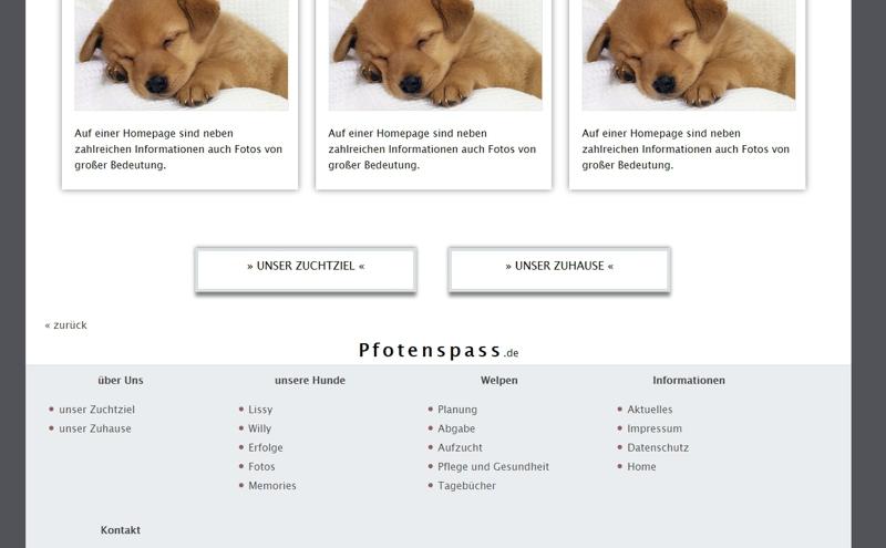 Homepagevorlage-Template-02-03-website3