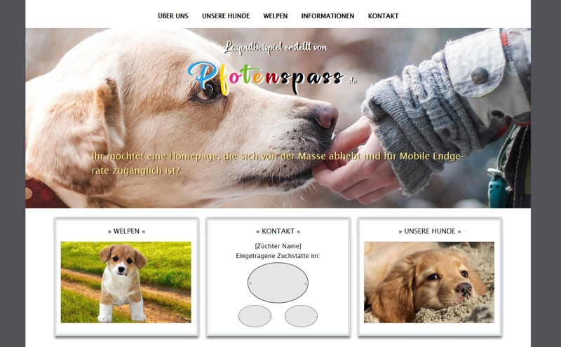 Homepagevorlage-Template-02-18