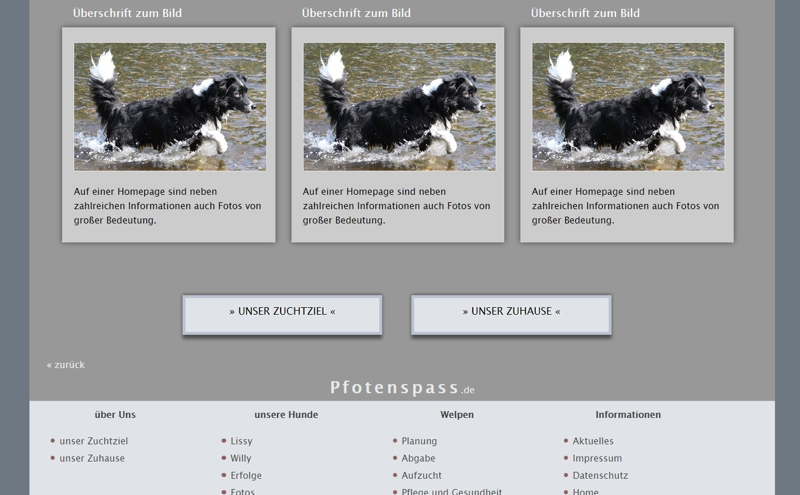 Homepagevorlage-Template-03-20-website2