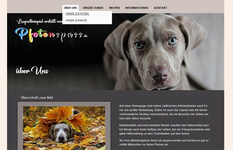Homepagevorlage-Template-02-30-website