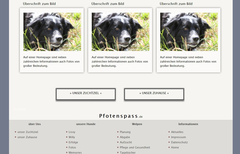 Homepagevorlage-Template-02-31-website2