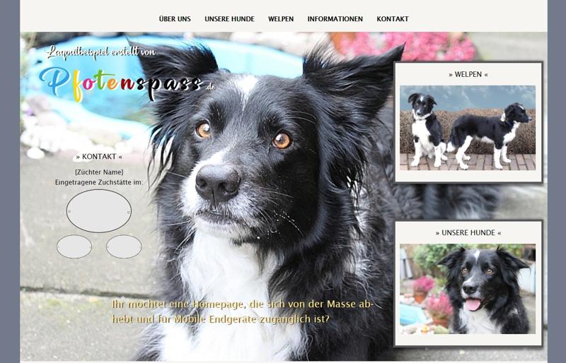 Homepagevorlage-Template-02-31