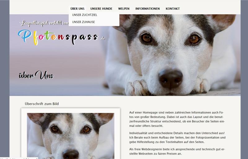 Homepagevorlage-Template-02-32-website