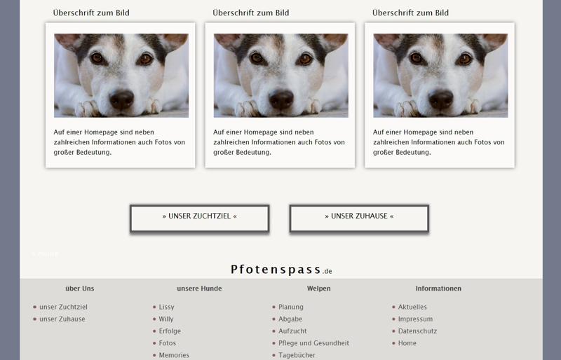 Homepagevorlage-Template-02-32-website2