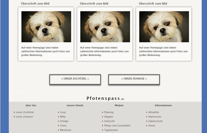 Homepagevorlage-Template-02-33-website2