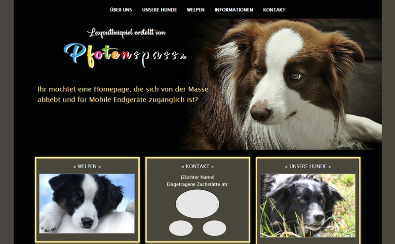 Homepagevorlage-Template-03-12