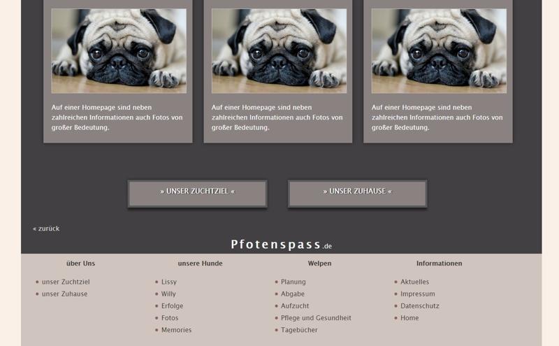 Homepagevorlage-Template-03-14-website3
