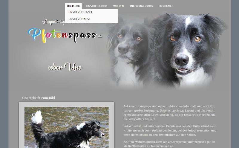 Homepagevorlage-Template-03-20-website