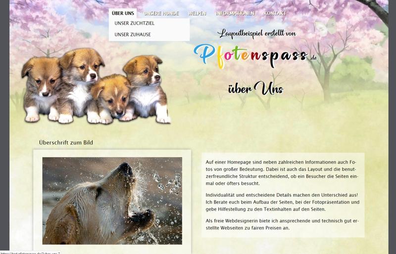 Homepagevorlage-Template-04-01-website