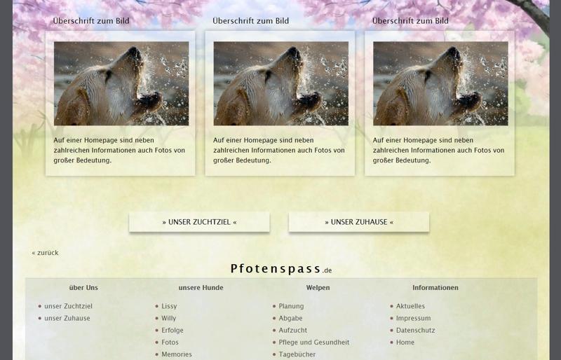 Homepagevorlage-Template-04-01-website2