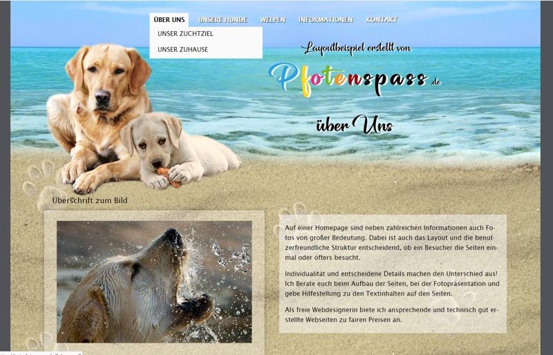 Homepagevorlage-Template-04-02-website