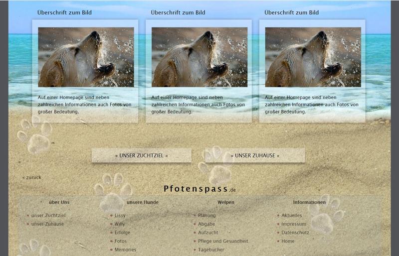 Homepagevorlage-Template-04-02-website2