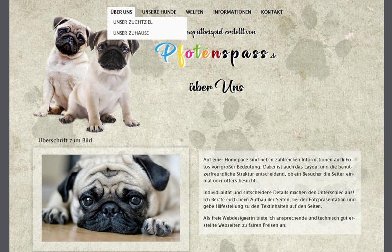 Homepagevorlage-Template-04-03-website