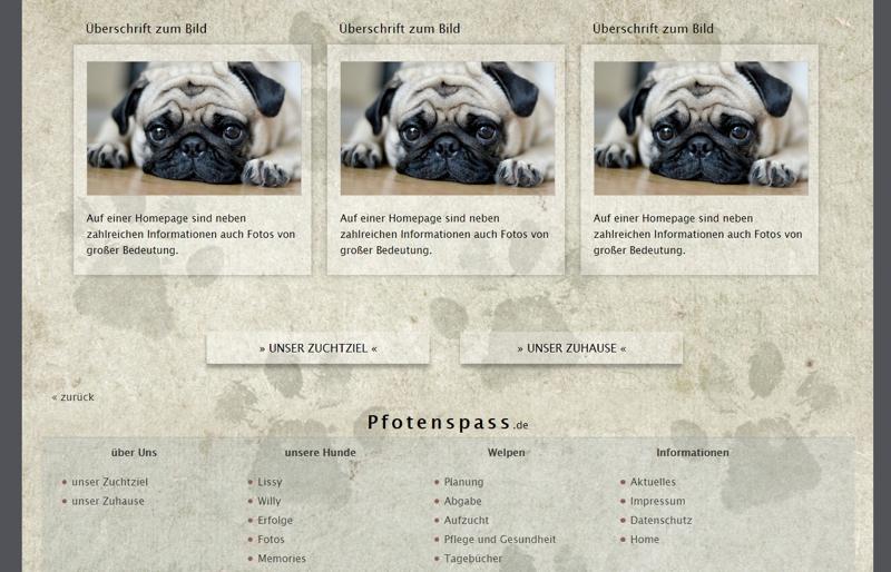 Homepagevorlage-Template-04-03-website2