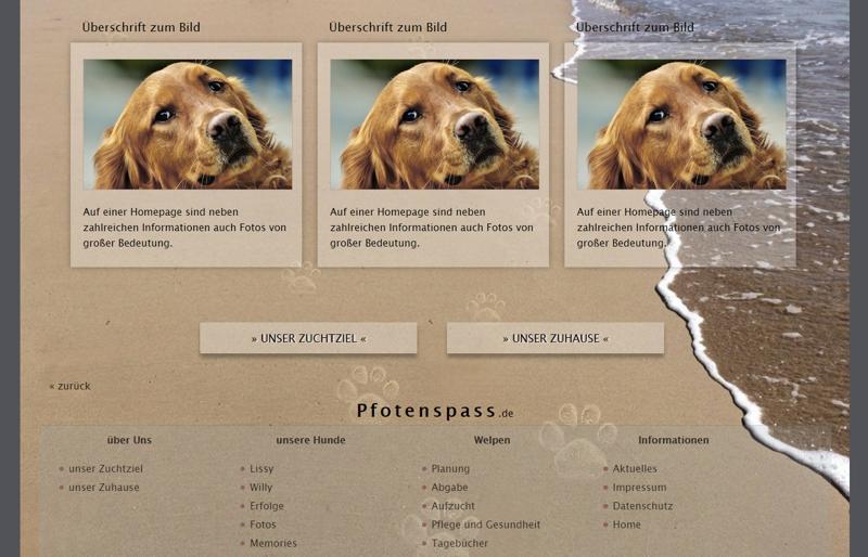Homepagevorlage-Template-04-04-website2