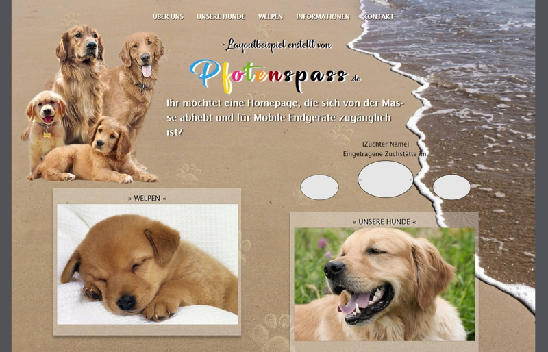 Homepagevorlage-Template-04-04