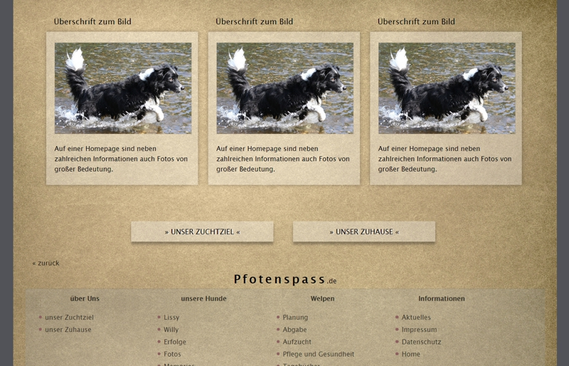 Homepagevorlage-Template-04-05-website2