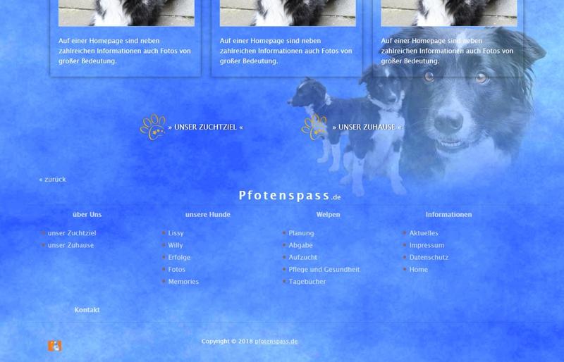 Homepagevorlage-Template-04-06-website2