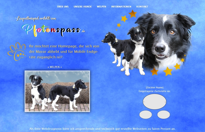 Homepagevorlage-Template-04-06