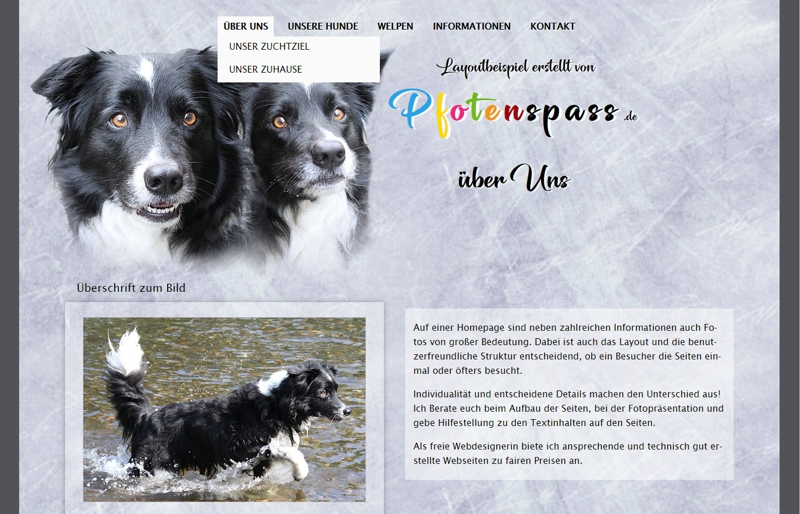 Homepagevorlage-Template-05-01-website