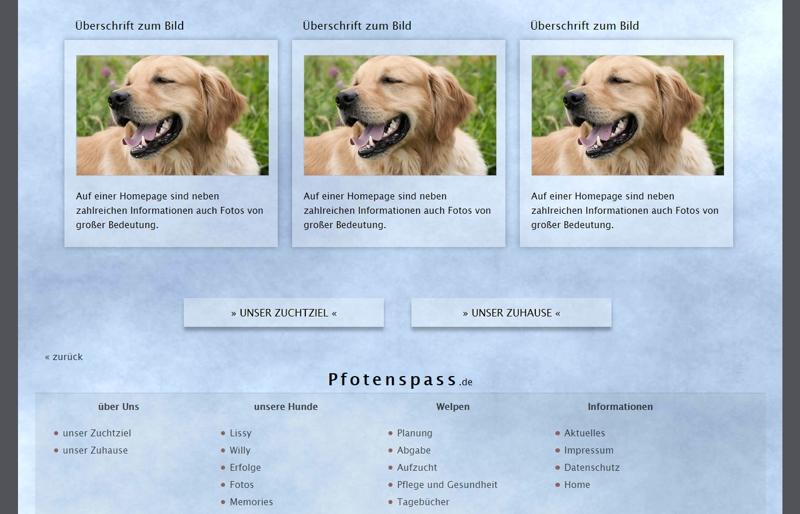 Homepagevorlage-Template-05-02-website2